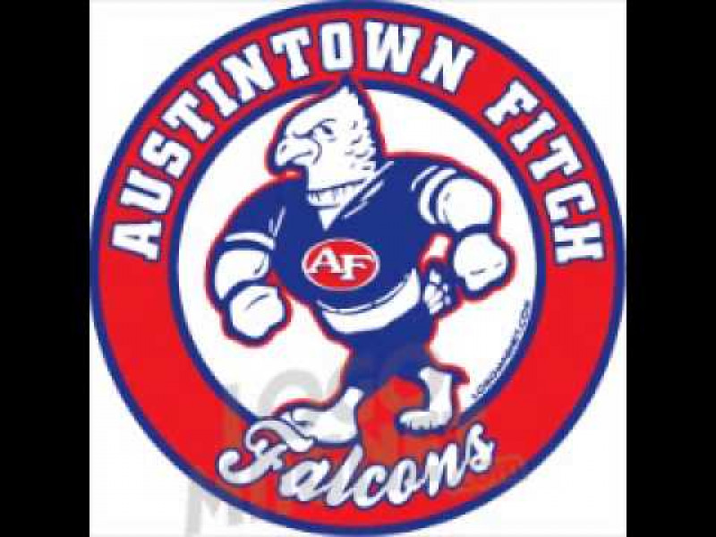 Austintown Fitch HS