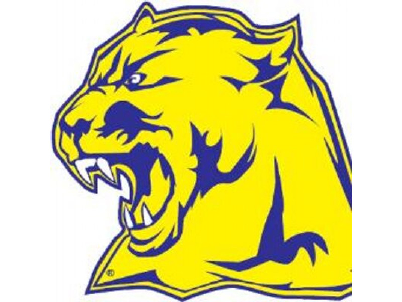 Whitmer High School
